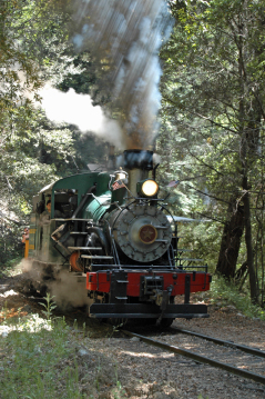 Trip Report – Roaring Camp & Big Trees Railroad